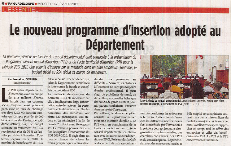 Plénière «spécial Insertion» du Conseil Départemental