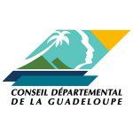 Appel a projet pour la mise en œuvre  d'ateliers parcours d'insertion (api)  pour les bénéficiaires du rsa sur le territoire de la Guadeloupe